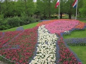 Hebat yah, tulip disusun menyerupai wajah orang