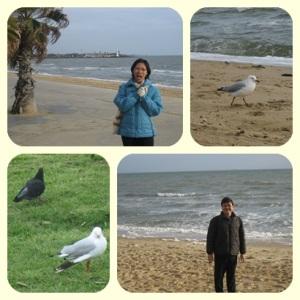 Burung pun menikmati..