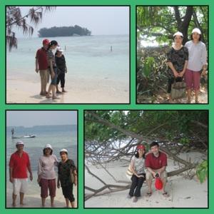 Pulau rimbun dengan pantai pasir putih. Lovely !