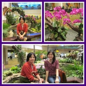 Orchid Garden @ Changi