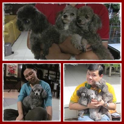 Cirebon : 27-29 Desember 2014 (2/6)