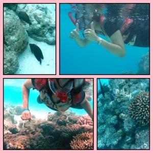 Hati-hati badan jangan terkena coral