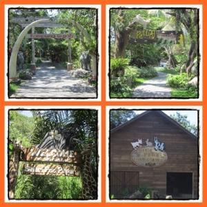 Berbagai area di Bali Safari