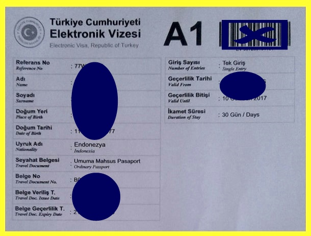 print out e-visa Turkey